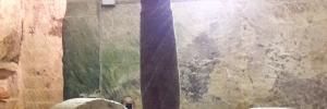 L'oro del Salento targato Caprarica