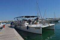 Tutti a bordo del Catamarano Meraviglioso!