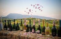 """""""Prosecco & Rosa""""  a Treviso dal 9 luglio"""